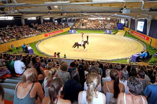 Vaulting at CHIO Aachen. (c) Andreas Steindl / CHIO Aachen
