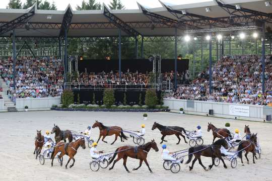 CHIO Aachen 2016 Horse & Sinfony (Photo: Andreas Steindl)