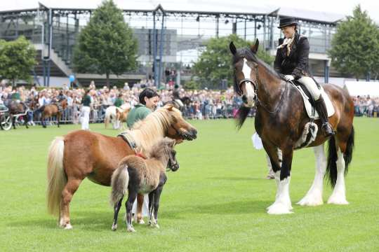 Soers Sunday Photo: CHIO Aachen / Andreas Steindl