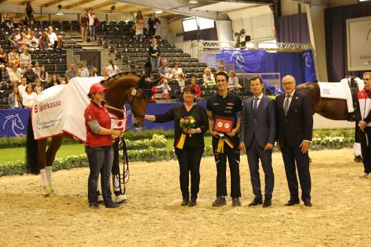 Prize of Spraksse Freestyle Test to Music Male Photo: CHIO Aachen / Michael Strauch
